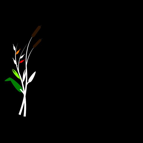 Bumskolben White PNG Clip art