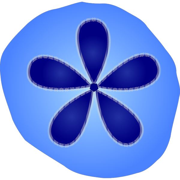 Sand Dollar PNG icon