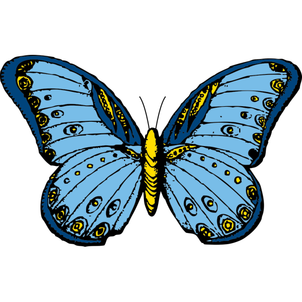 Blue And Yellow Butterfly PNG Clip art