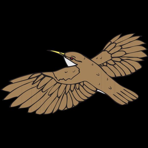 Brown Bird Flying PNG Clip art