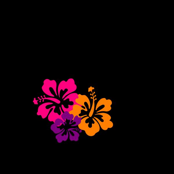 Hibiscus Color Trio PNG Clip art