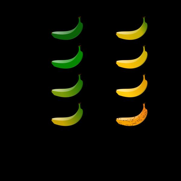 Banan Color Chart PNG Clip art