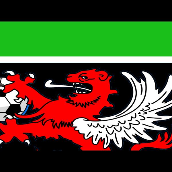 Logo Hospital PNG Clip art