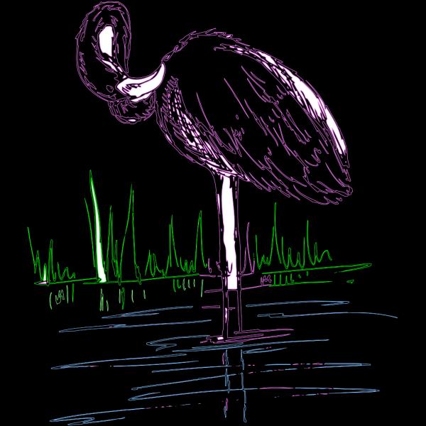 Flamingo Drawing PNG Clip art