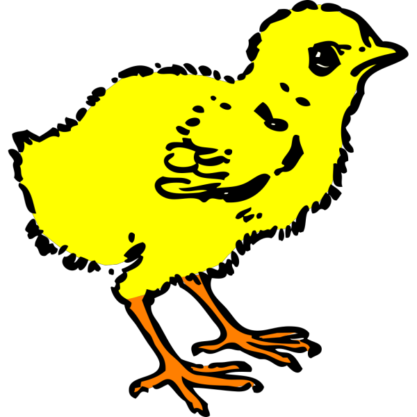 Chick In Color PNG Clip art