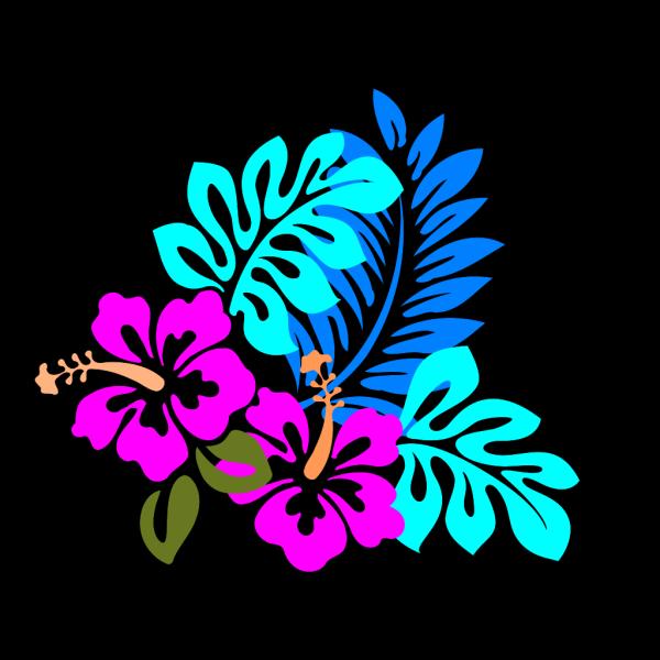 Colorful Flower PNG Clip art