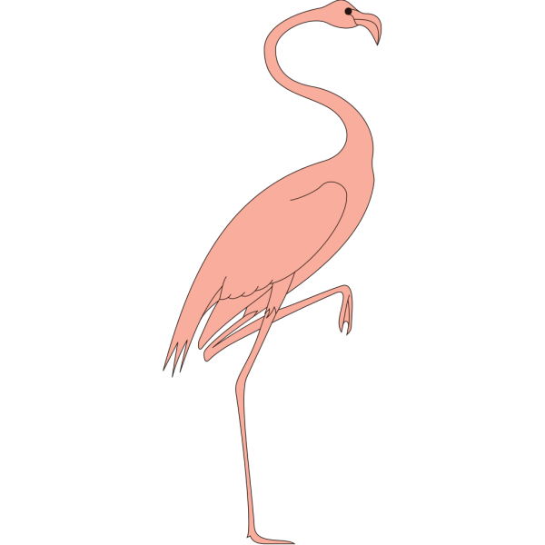 Flamingo With Leg Raised PNG Clip art