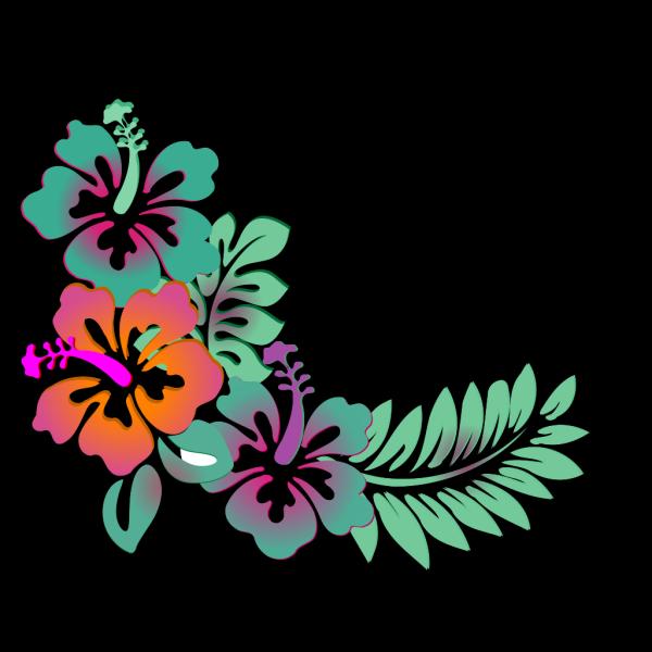 Hibiscus Corner Soft Colors PNG Clip art