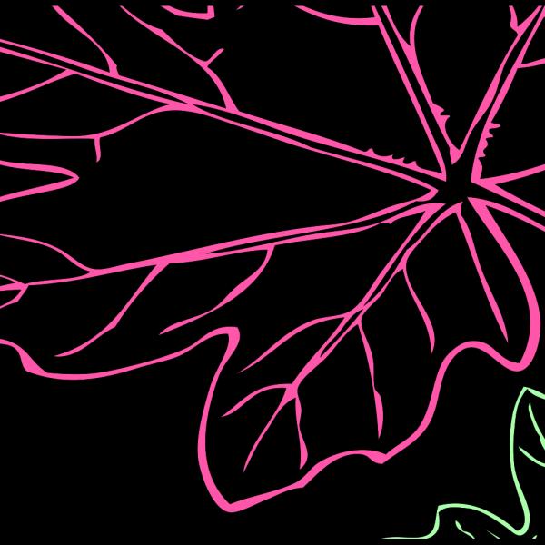 Leaf Backround Color PNG Clip art