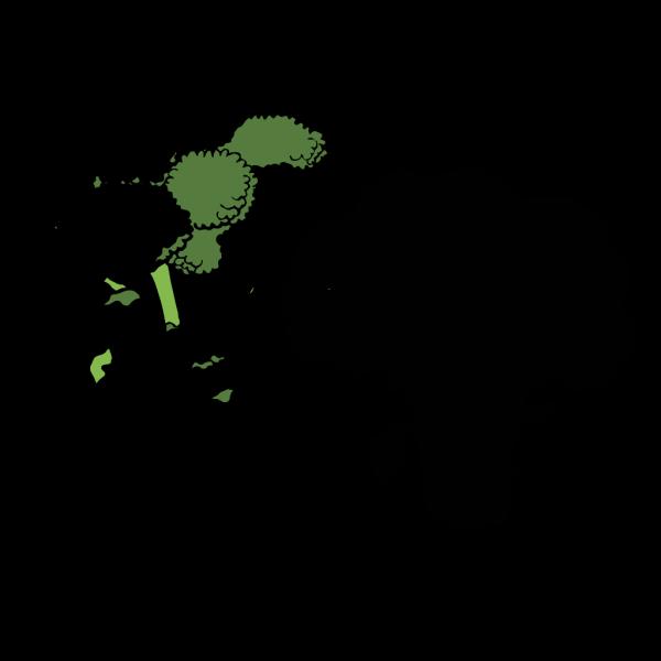Broccoli 1 Color PNG Clip art
