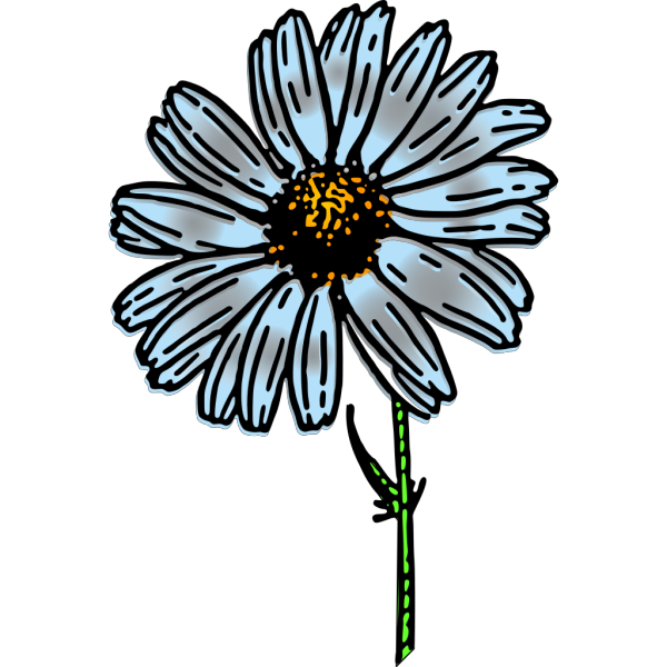 Colored Daisy PNG Clip art
