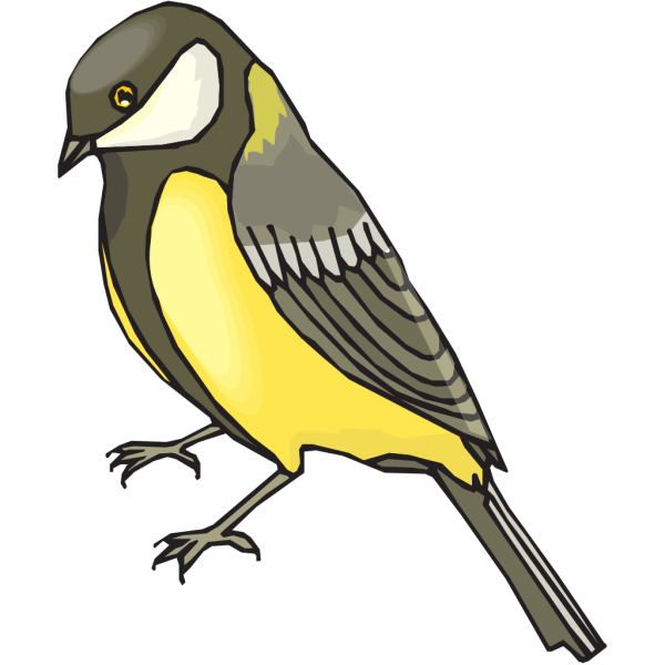 Goldfinch Side View PNG images