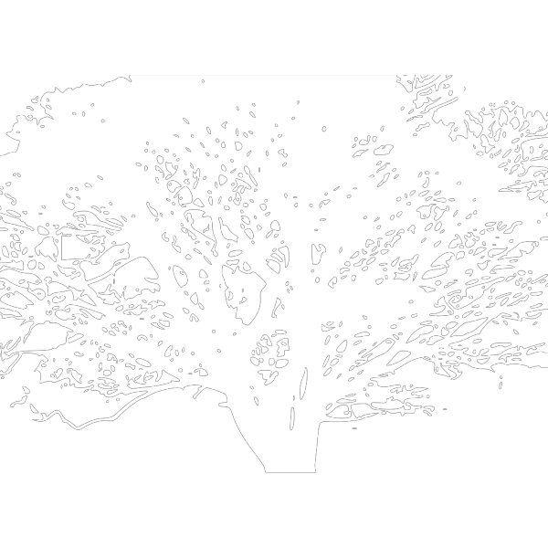 White Tree PNG Clip art