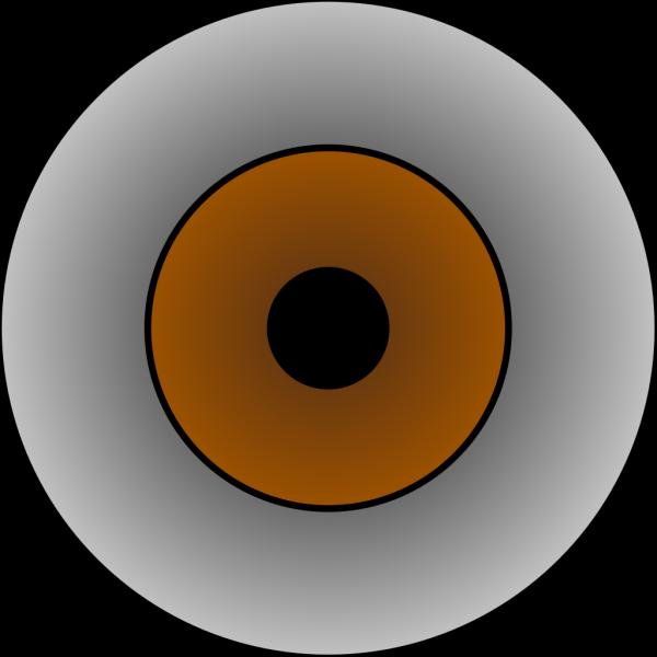 Tonlima Olhos Castanhos Brown Eye PNG Clip art