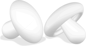 Two Mushrooms PNG Clip art