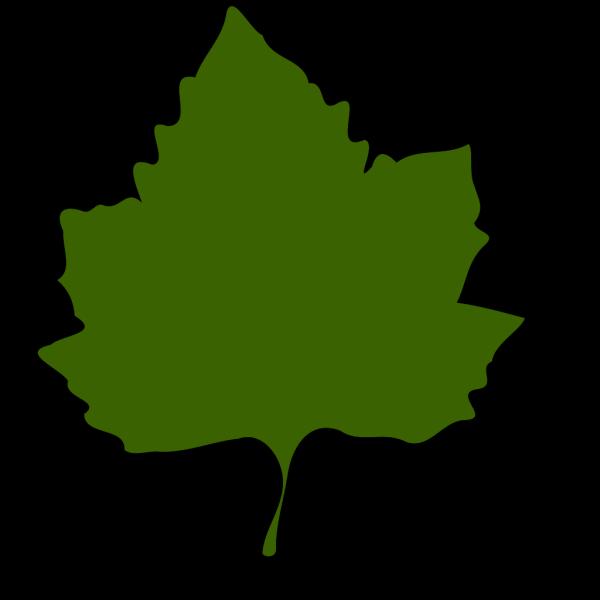 Green Leaf, Green Border PNG Clip art