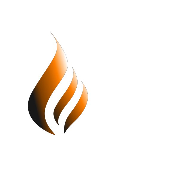Orange Logo Flame