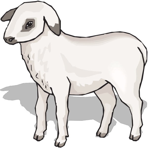 Lamb PNG images