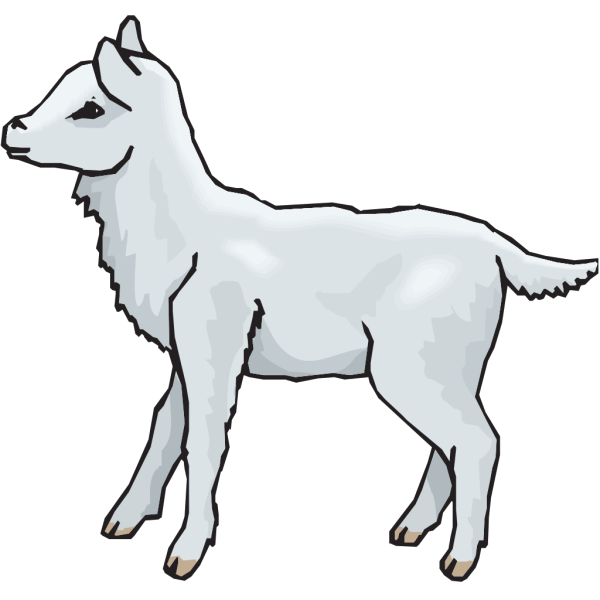Lamb Standing PNG images