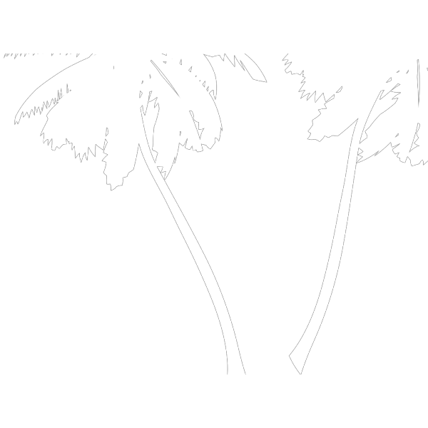 Sophies Palm Trees PNG Clip art
