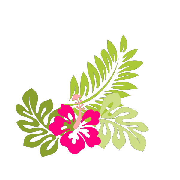 Hibiscus Flower Outline Pink PNG Clip art