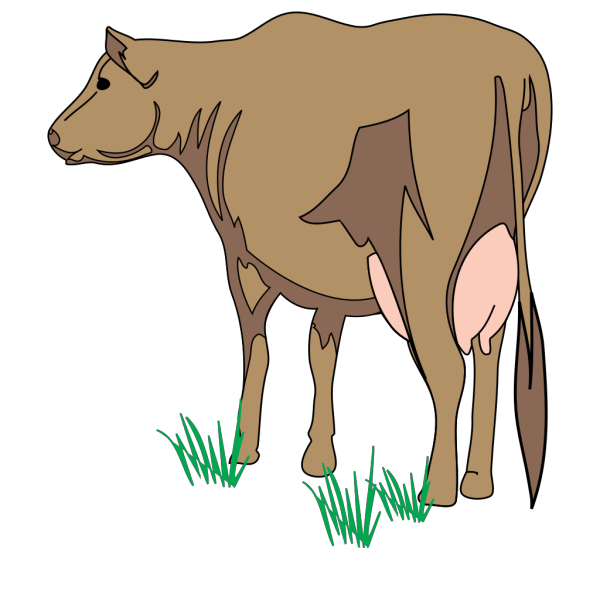 Brown Cow Rear View PNG Clip art