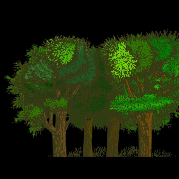 Colorful Autumn Road Trees Park X PNG Clip art