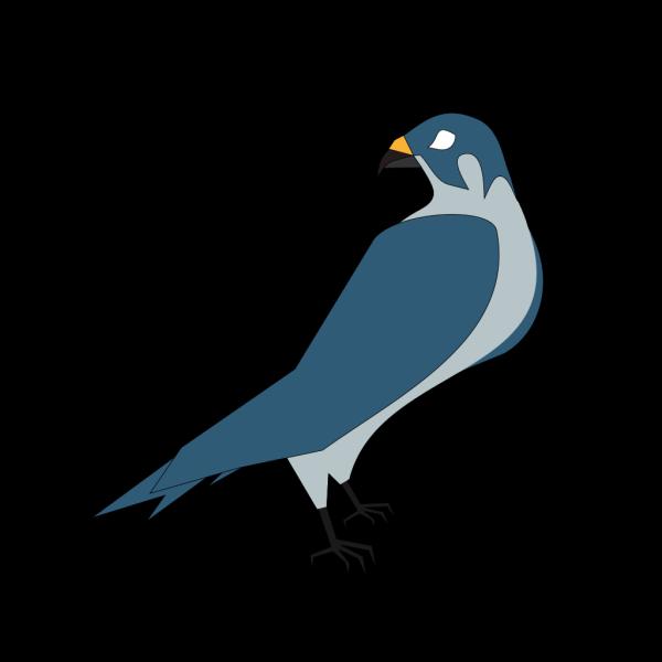 Hawk Head PNG images