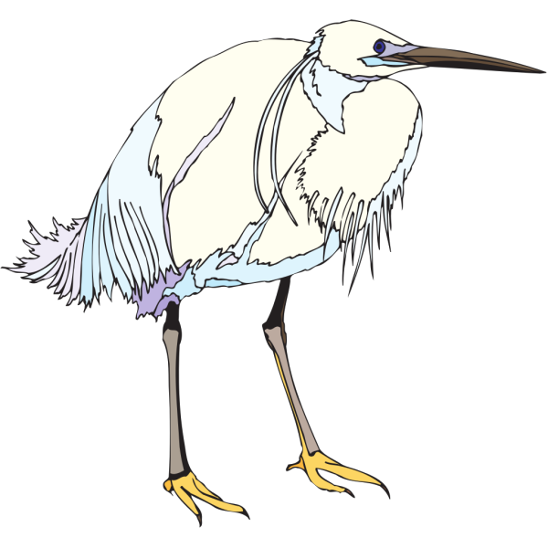 White And Blue Heron PNG images
