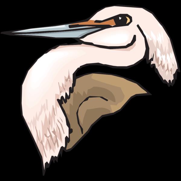 Pink Heron Head PNG images
