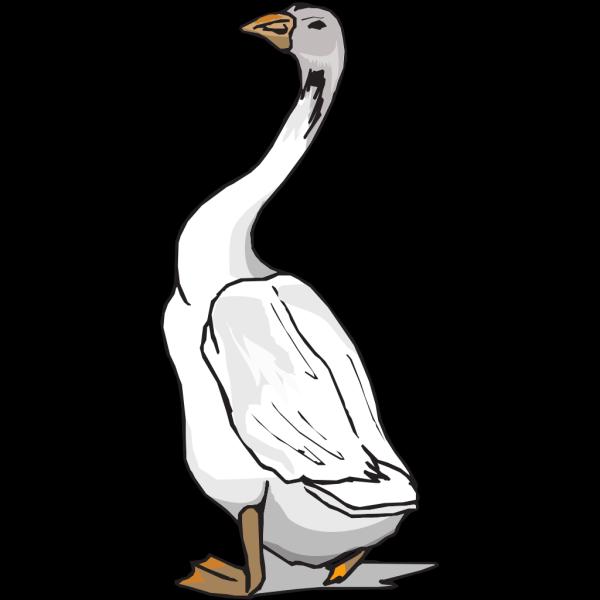 Goose Walking PNG Clip art
