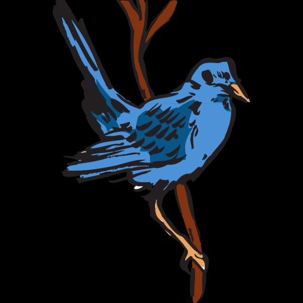 Blue Bird Perched PNG Clip art