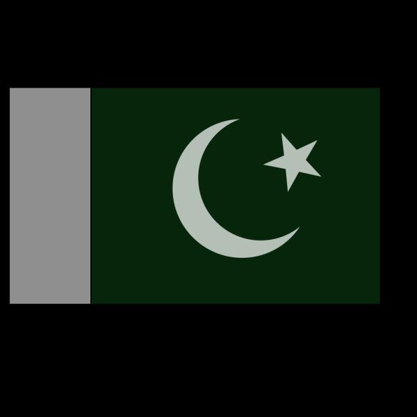 Pakistani Official Flag PNG Clip art