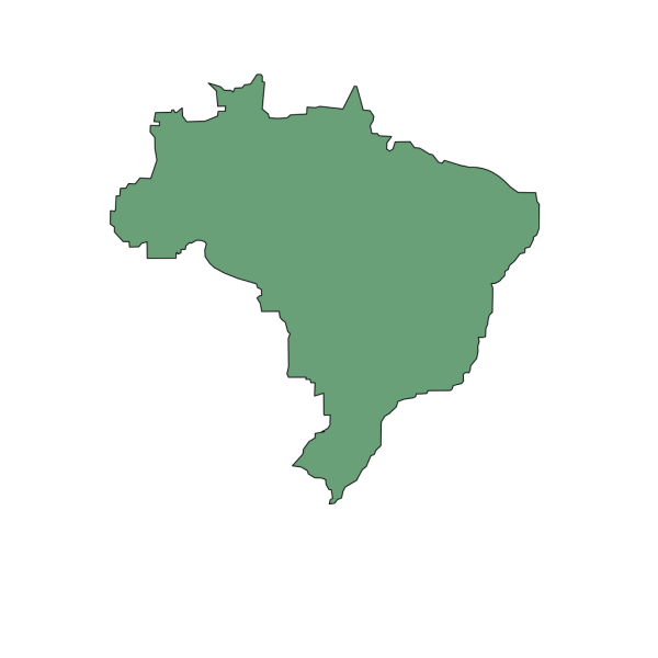Brazil World Champion PNG images
