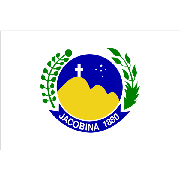 Bandeira De Jacobina PNG Clip art