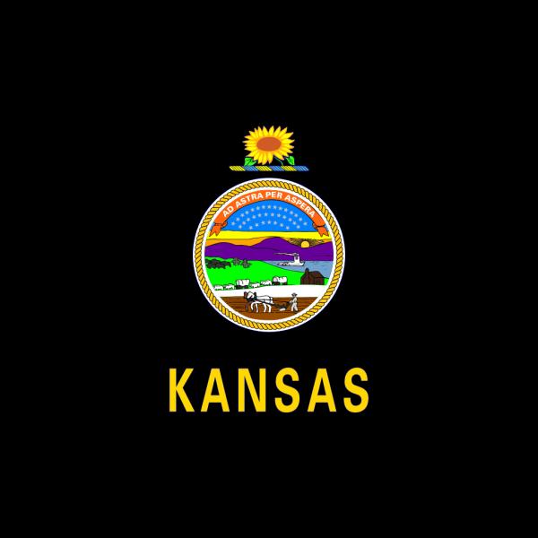 Us Kansas Flag PNG icons