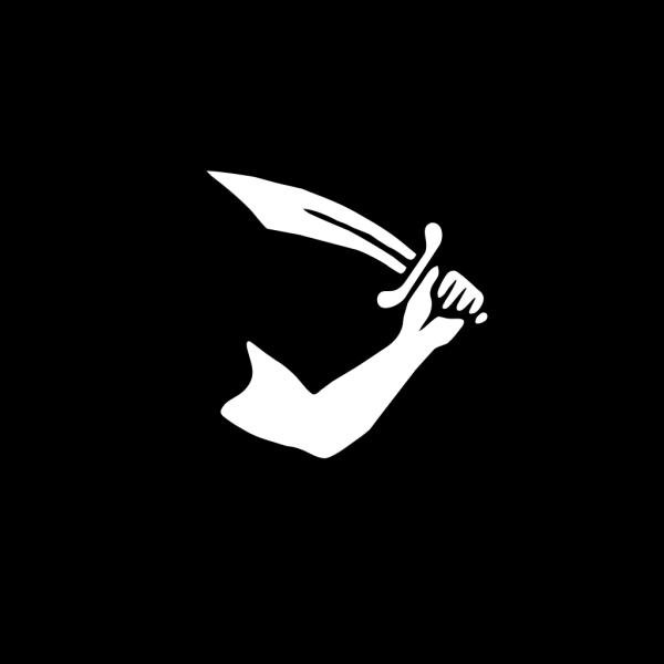 Pirate Flag Thomas Tew PNG Clip art
