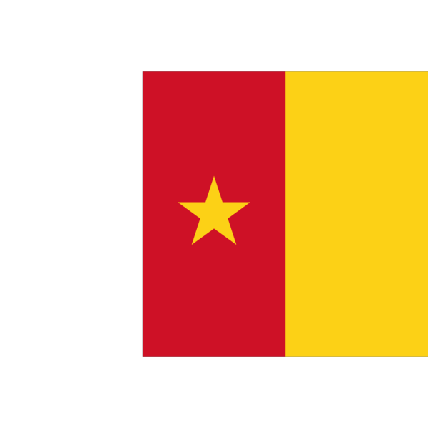 Flag Of Cameroon PNG Clip art