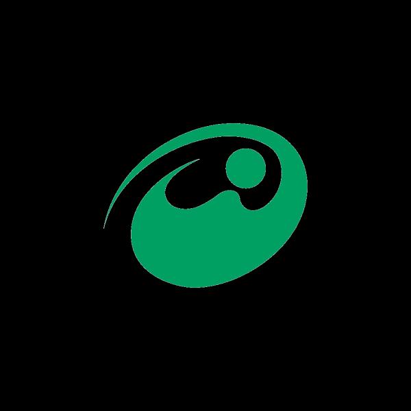 Flag Of Nishitokyo Tokyo PNG Clip art