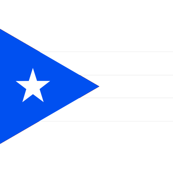 Flag Of Puerto Rico PNG clipart