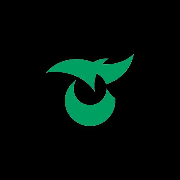 Flag Of Saku Nagano PNG images