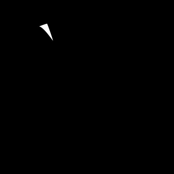 Flag Outline PNG Clip art