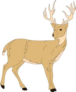 Deer With Fur PNG Clip art