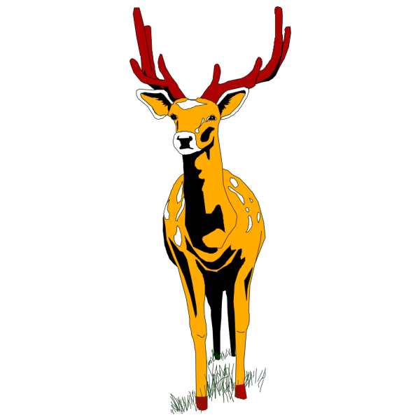Deer Front View PNG images