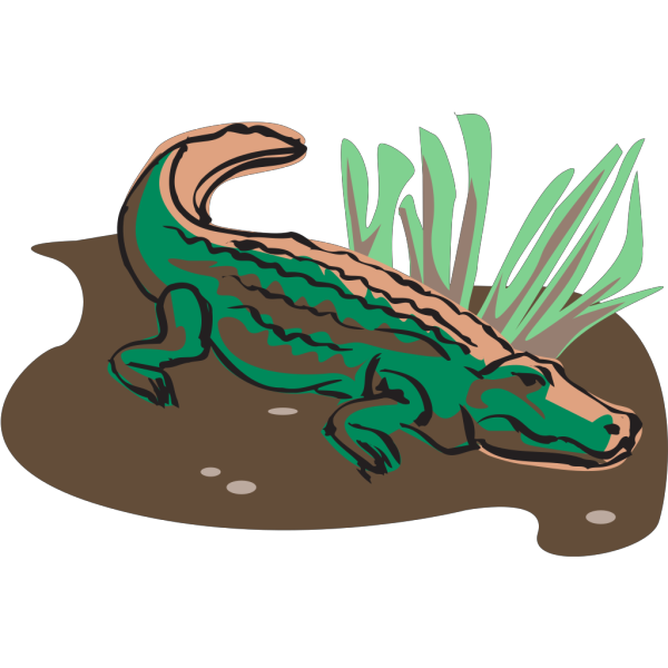 Crocodile Art PNG images