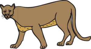 Walking Cougar PNG Clip art