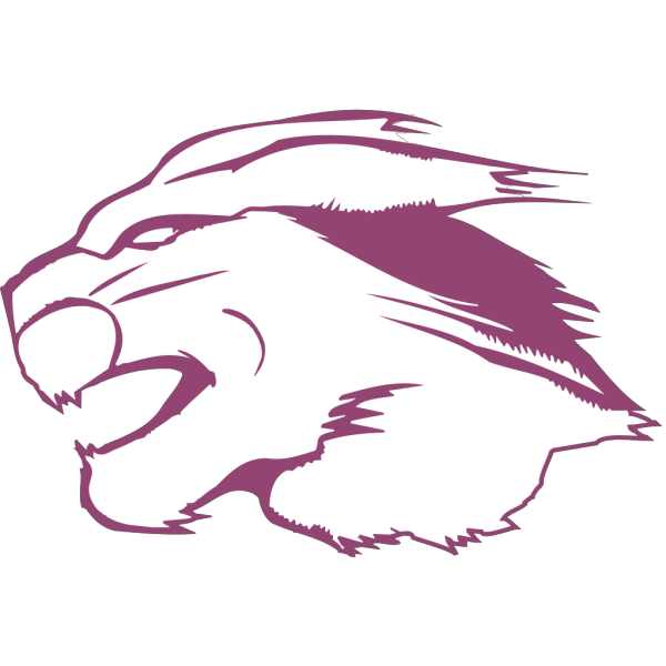 Cougar Head PNG images