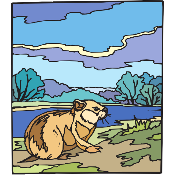 Paint By Numbers Chipmunk PNG Clip art