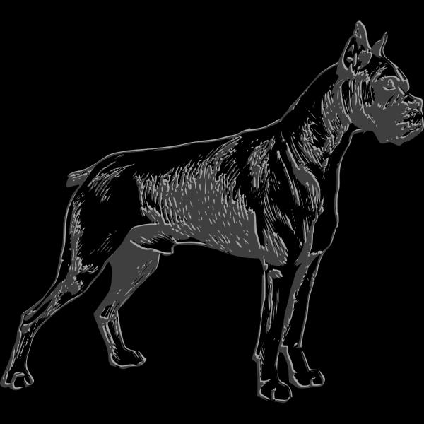 Dog PNG Clip art