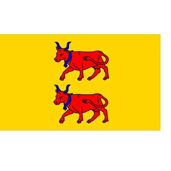 Flag Of Bearn PNG image